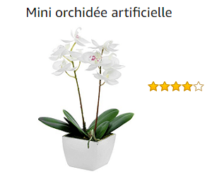 phalaenopsis artificielle